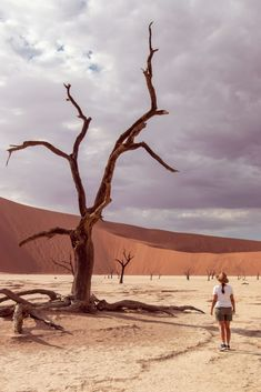 Sossusvlei is synonymous with red sand dunes and Namibia. Here are some tips for visiting Sossusvlei, including budget accommodation & top activities. Defender 110, Land Rover Defender, Africa Travel, Us Travel, Before Sunrise, Beautiful Sunrise, The Dunes, Amazing Destinations, Safari
