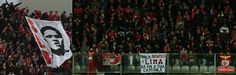 A Minha Chama: 22ª J: Moreirense 1 S.L. Benfica 3