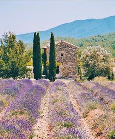 Want to know which towns and villages in Provence are worth visiting? Photographer Mary Quincy gives her guide to the most beautiful towns in Provence La Provence France, Provance France, Places To Travel, Places To See, Valensole, French Countryside, Beautiful Places In The World, South Of France, France Travel