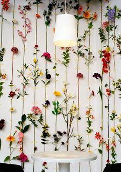 A primavera já vai dando seu ar da graça e, se as flores já