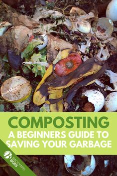 Yes, garbage can be gross. But composting can save you money and help you grow amazing plants. This is everything you need to know about what is compostable in your home. Dinner This Week, Food Waste, Healthy Choices, Gardening Tips, Save Yourself, Crockpot, Yummy Food, Backyard, Healthy Recipes