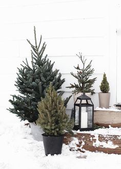 christmas garden decor Simple Outdoor Christmas Decor - The Merrythought Christmas Tree Decorating Tips, Christmas Garden Decorations, Diy Garden Decor, Christmas Home, Christmas Wreaths, Christmas Movies, Country Christmas, Christmas Christmas, Seasonal Decor