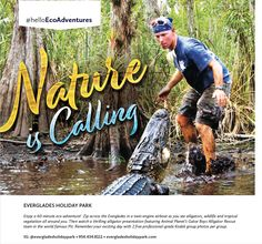 Enjoy a 60-minute eco-adventure! Zip across the Everglades in a twin-engine airboat as you see alligators, wildlife and tropical vegetation all around you. Then watch a thrilling alligator presentation featuring Animal Planet's Gator Boys Alligator Rescue team in the world famous Pit.  IG: @evergladesholidaypark • 954.434.8111 • evergladesholidaypark.com