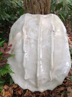 """Alligator Snapping Turtle - 23"""" x 21"""""""