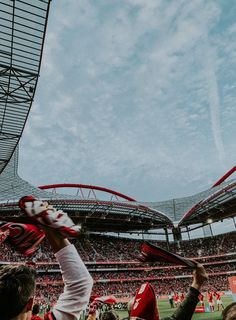 Benfica Wallpaper, Louvre, Soccer, Football, Iphone, Building, Sports, Travel, Nature Animals