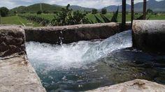 La Compañía Nacional de Aguas de Israel Mekorot rehabilitará los acuíferos mexicanos | Diario Judío: Diario de la Vida Judía en México y el Mundo