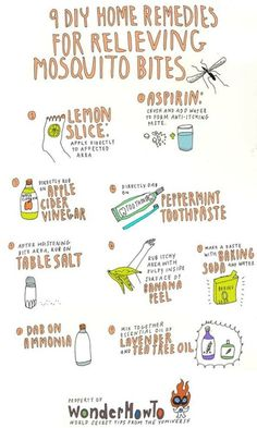 To: 9 DIY Home Remedies for Relieving Itchy Mosquito Bites 9 DIY remedies for mosquito bites.apple cider vinegar can do DIY remedies for mosquito bites.apple cider vinegar can do anything! Mosquito Bite Relief, Bug Bite Relief, Mosquito Bite Treatment, Mosquito Bite Cure, Bug Bite Treatment, Mosquito Trap, Mosquito Control, Mosquito Killer, Pest Control
