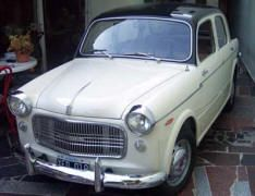 1957 1960 Fiat 1100d Classic Fiat Cars For Sale In Usa Autos