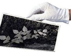 #guanti nylon e cotone per maneggaire prodotti #archivio