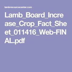 Lamb_Board_Increase_Crop_Fact_Sheet_011416_Web-FINAL.pdf