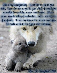 LET THE WOLVES LIVE IN PEACE!!!