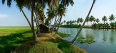 KERALA-Waterscapes, the backwater resort of the Kerala Tourism Development Corporation has independent cottages built on stilts, set amidst coconut groves and panoramic view of the backwaters. Holiday packages involving houseboats, traditional Kettuvalloms (rice barges) offer great experiences.