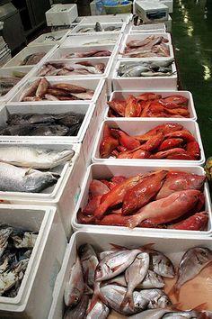 Basa Fish Recipes, Whole30 Fish Recipes, Baked Salmon Recipes, Healthy Eating Recipes, Seafood Recipes, Loaf Recipes, Seafood Shop, Seafood Market, Amberjack Fish Recipe