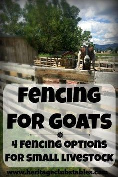 Fencing for Goats: One of the four options may just be the perfect solution for…