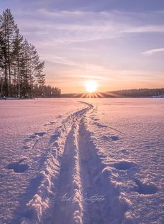 Cross country skiing at sunrise! Winter Magic, Winter Snow, Winter Photography, Nature Photography, Travel Photography, Beautiful World, Beautiful Places, Foto Gif, Winter Scenery