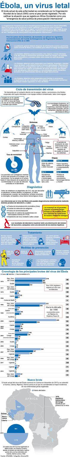 Ébola, un virus letal @unoticias