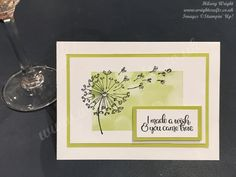 """If you want to send a card to a special person in your life, the Dandelion Wishes stamp set is perfect. And also includes a """"Well Wishes"""" sentiment, so can be used for a. Wish You Well, Make A Wish, Dandelion Wish, Send A Card, Stampin Up Catalog, Friendship Cards, Stamping Up, Flower Cards, Homemade Cards"""