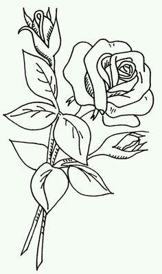 Rose on a Stem