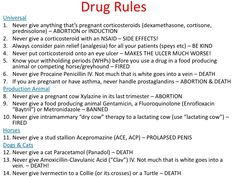 "why-i-am-a-vet-student: ""Just under an hour and a half until I walk into my Pharmacology final! Here are some very general and broad drug rules for your reference (there are many exceptions! Vet Tech Student, Medicine Quotes, Vet Assistant, Horse Care Tips, Pet Vet, Vet Clinics, Animal Science, Veterinary Medicine, Veterinary Technician"