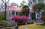 St. Paul's Episcopal Church, Summerville, SC.  Beauty in the Spring.