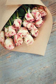 Beautiful roses  - HazeM MosTafa - Google+