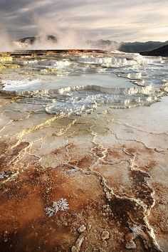 Mammoth Hot Springs in Yellowstone National Park, United States.