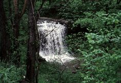 Robinson Falls, off Rt. 201, Connellsville, PA;  photo by Fred Yenerall