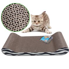 Benrisstore New Cat Scratcher Sofa with Catnip Tiger -- New and awesome cat product awaits you, Read it now : Cat scratcher Cat Scratcher, Sofa, Pets, Awesome, Settee, Scratching Post, Couch, Couches, Animals And Pets