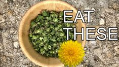 James Gop shows how to make capers from foraged dandelion buds.