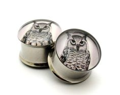 owl gages!