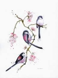 long tailed tit - Google Search