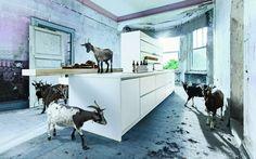 Best next kitchens images german kitchen kitchens