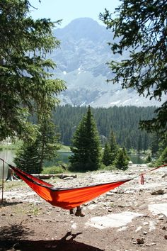Nothing better than hanging out in the Hammock !