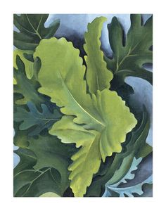 O'Keeffe, Green Oak Leaves