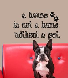 Vinyl Wall Decal A House Is Not a Home Without a by HouseHoldWords, $17.00. Got it so cute!!!