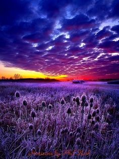 Purple Sunset, Wisconsin