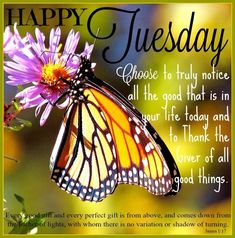 Happy Tuesday Notice All The Good good morning tuesday tuesday quotes good morning quotes happy tuesday tuesday blessings happy tuesday quotes good morning tuesday good morning quotes for friends and family tuesday blessings quotes inspirational tuesday quotes