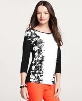 Petite Floral Persuasion Print 3/4 Sleeve Top - We love the hand-painted allure of this feathery floral print, artfully defined in a striking black-and-white palette. Jewel neck. 3/4 sleeves.