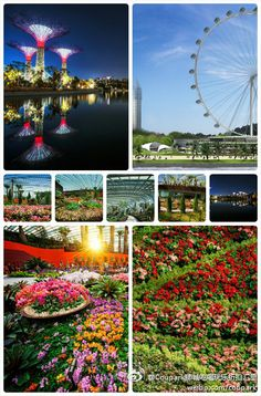 50% Off Attractions Cash Voucher! Enjoy Discounted Price For Admission to Universal Studios, Zoo, Jurong Bird Park, Night Safari, Duck Tour, Singapore Flyer & Many More   http://www.coupark.com/deal/28101/50-off-attractions-cash-voucher-enjoy-discounted-price-for-admission-to-universal-studios-zoo-jurong-bird-park-nigh.html