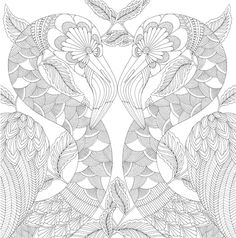 Tropical Wonderland by Millie Marotta adult colouring book