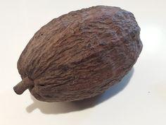¿Sabías que más del 50% de nuestros productos contienen ingredientes procedentes del fruto del cacao? Puedes conocerlos todos del 20 al 23 de Octubre en el XI Salón del chocolate, en el CC Moda Shopping de Madrid  @modashoppping @chocoadictos