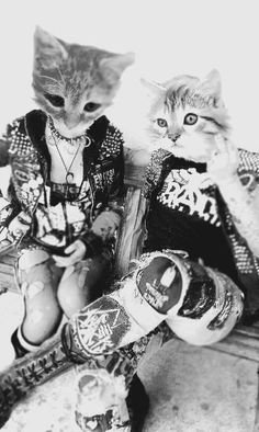 Punk as Fuck Sid And Nancy, Animal Masks, Animal Heads, Grunge, Crust Punk, New Wave, Kawaii, Punk Goth, Punk Fashion