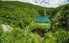Download wallpapers Plitvice Lakes, Croatia, forest, cascade of lakes, summer, travel, national park