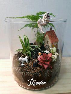 Terrarium/J.garden terrarium