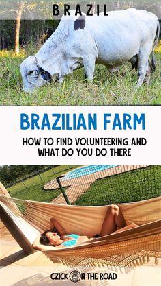 Living on a farm – how we did volunteer work in Brazil #brazil #volunteer #voluntourism #travel #workandtravel