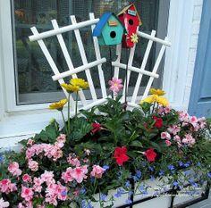 May window boxes with azaleas, mandevilla, gerber daisies and lobelia (Garden of Len & Barb Rosen)