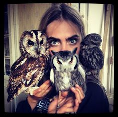 Cara Delevingne and owls