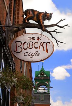 The unique Bobcat Cafe sign on the south side of Main Street with Holley Hall clock tower in the background. Renovation of the Bobcat was financed through sale of shares to Bristol townspeople. Metal Signage, Shop Signage, Vermont, Storefront Signs, Cafe Sign, Pub Signs, Business Signs, Store Signs, Advertising Signs