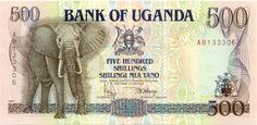 African elephants on paper money