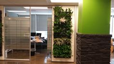 One of our many Living walls in Calgary